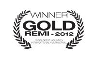 WB-G-REMI-2012-v2