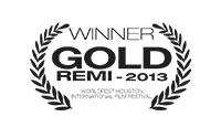 WB-G-REMI-2013-v2