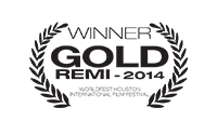 WB-G-REMI-2014-v2