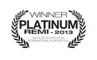 WB-P-REMI-2013-v2