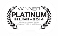 WB-P-REMI-2014-v2