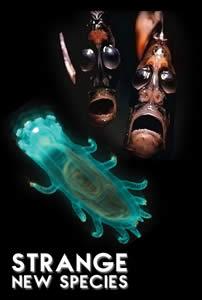 Strange New Species 3D