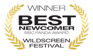 WB-best-newcomer