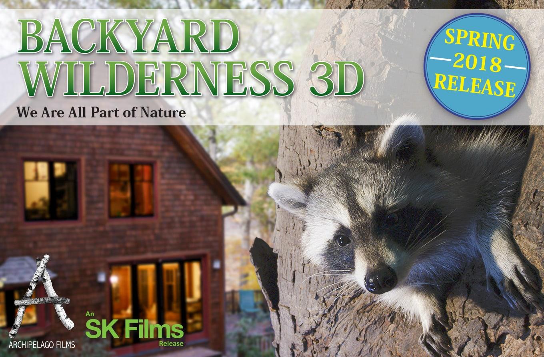 BW SK Website Landscape 01
