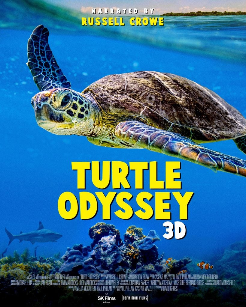 Turtle Odyssey 3d